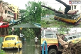 Cyclone Amphan loss, Cyclone Amphan loss, cyclone amphan kills 72 in west bengal, Latest updates