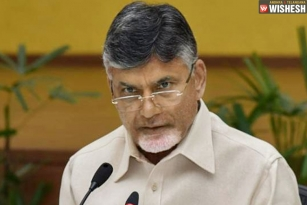 Historic Day For AP: Babu To Launch KIA's Trial Production