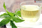Natural Remedies, Health Benefits, health benefits of peppermint tea, Home remedies