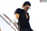 Prabhas movie updates, Prabhas movie updates, bollywood beauty to romance prabhas, Prashanth neel